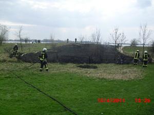 Flächenbrand an der Elbe